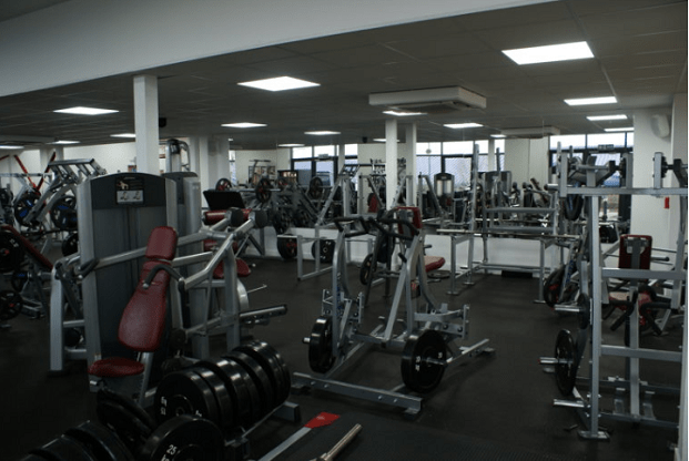 Dating for over a year no commitment gym